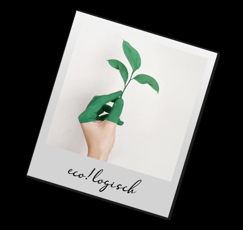 Ecologische toets
